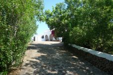 Country house in Fornells - Finca SANTA VICTORIA